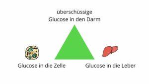 Diabetes verbessern durch alternative Methoden, Yuen Methode