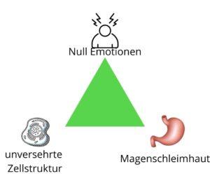 Stressulkus, Yuen Methode, Stress, Magenschleimhaut