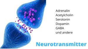 Gehirnstoffwechsel verbessern
